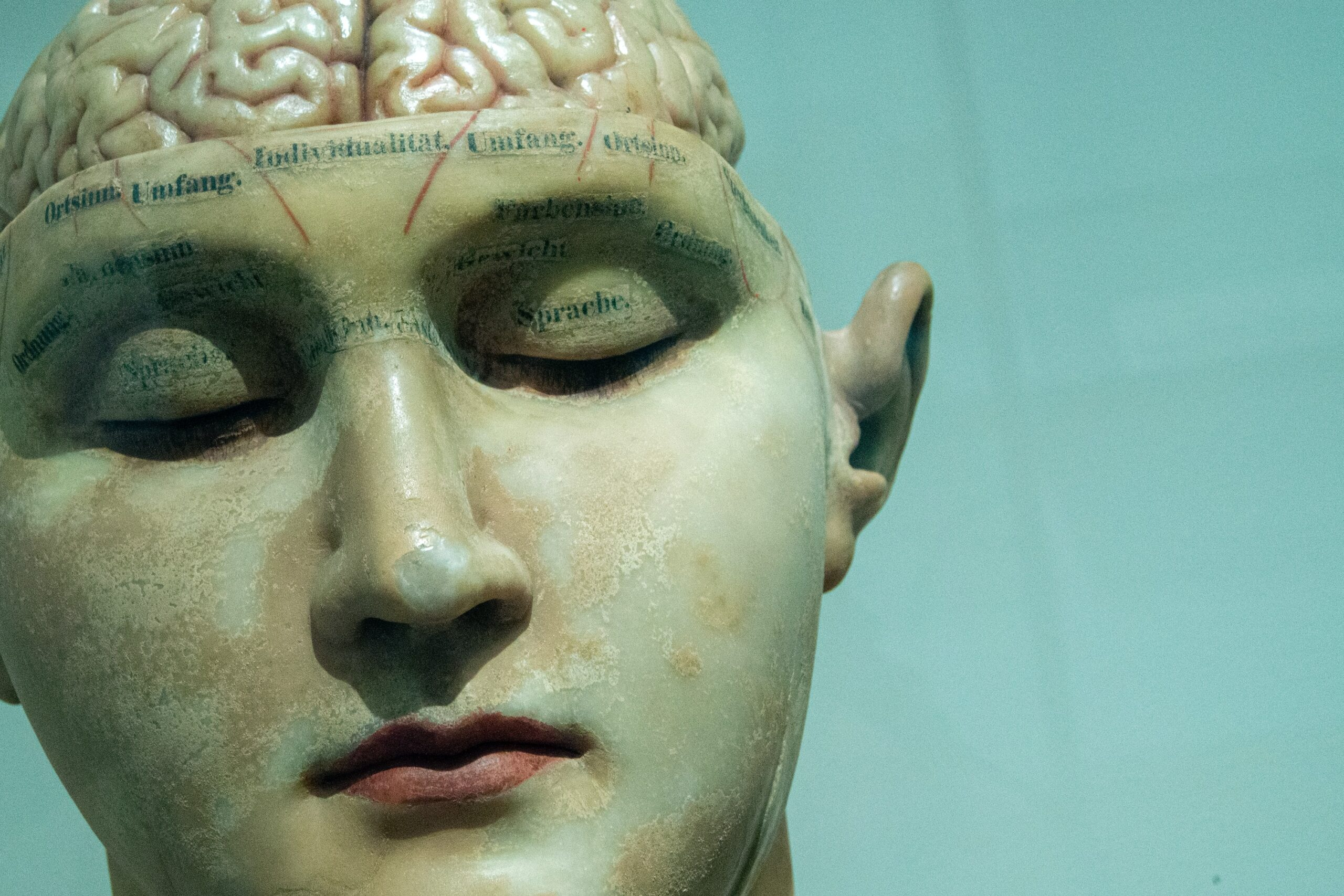 Overgangsalderen kan ændre hjernen
